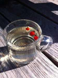 Glass of rosehip tea.